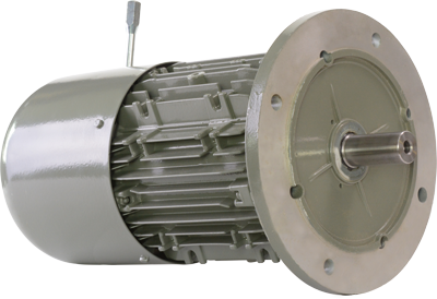 gearmotors for packaging - motor with brake and hand release lever
