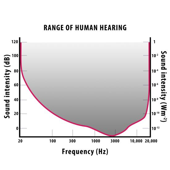 human hearing response chart